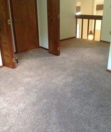 Carpet pic 3