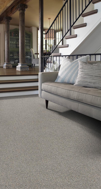 carpet (2)_1